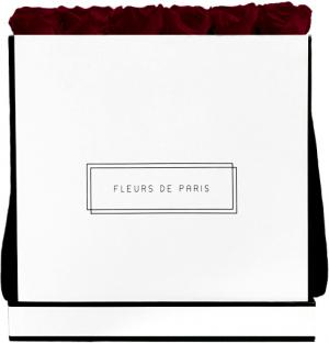 Infinity Collection Burgundy Luxe wit – vierkant
